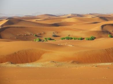 desert al ain