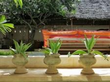 Lamu House 18